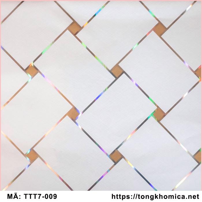 tấm trần nhựa pvc mã 009