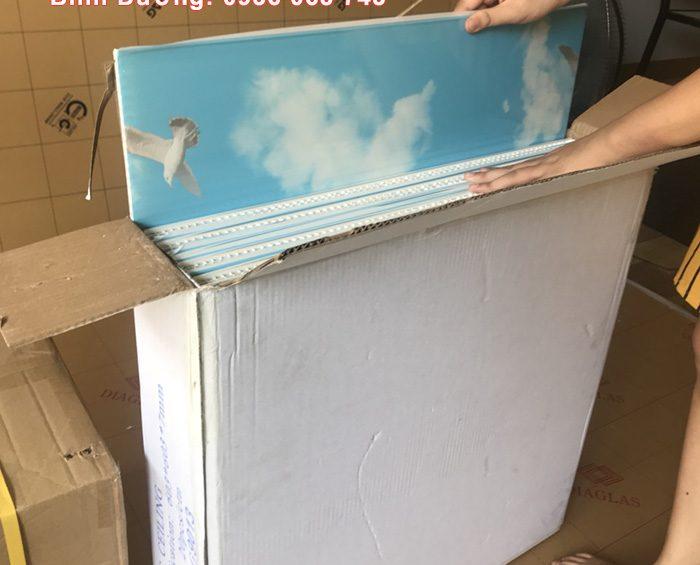 tam tran nhua pvc gia re 700x565 - Giá Trần Nhựa PVC – Giá Trần Thả PVC
