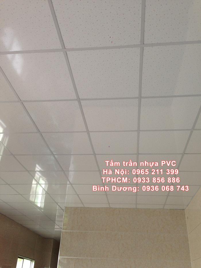 tam tran tha pvc 1 - Giá Trần Nhựa PVC – Giá Trần Thả PVC
